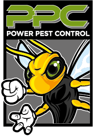 Pest Control West London